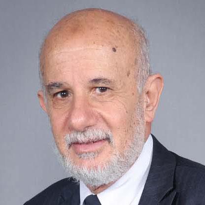 Mahmoud Abou Naaj picture